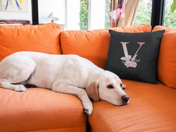 Custom Printed Monogram Letter V on Black Pillow Case mockup on an orange sofa near a labrador dog